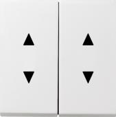 Двойные клавиши с двойными стрелками 1150112
