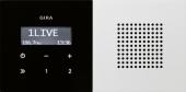 Радиоприемник скрытого монтажа с функцией RDS 2280112