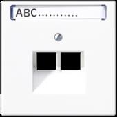 Крышка для сдвоенной телефонной и компьютерной розетки UAE с полем для надписи, белая LS969-2NAUAWW