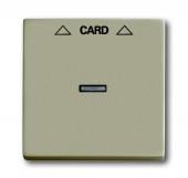 Плата центральная (накладка) для механизма карточного выключателя 2025 U, серия Basic 55, цвет шампань 1792-93-507