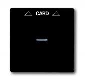 Плата центральная (накладка) для механизма карточного выключателя 2025 U, серия Basic 55, цвет chateau-black 1792-95-507