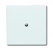Заглушка с суппортом (IP44), серия Allwetter 44, цвет альпийский белый 2138-34