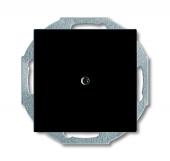 Заглушка с суппортом, серия Basic 55, цвет chateau-black 2538-95-507